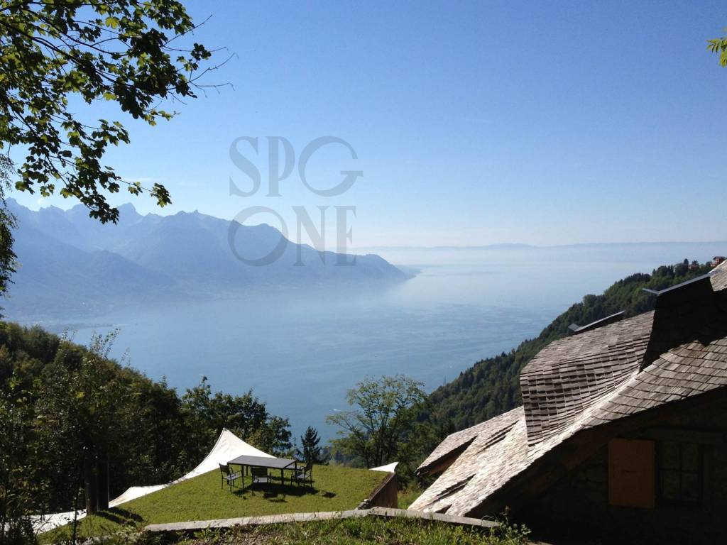 Additional photo for property listing at An eagle's nest above Geneva Lake   Vaud,1820 Suisse